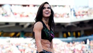 AJ Lee's Bio: Wedding