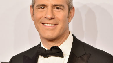 Andy Cohen's Wiki: Partner