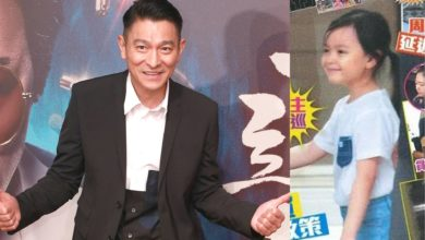 Andy Lau's Wiki: Wife