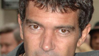 Antonio Banderas's Wiki: Wife