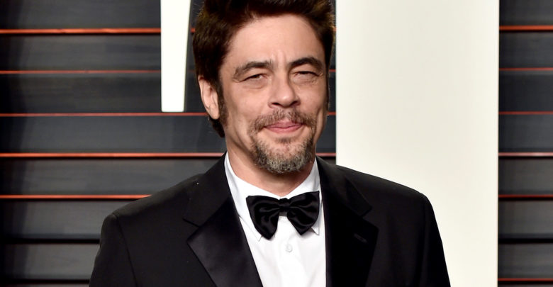 Who is Benicio Del Toro? Wiki: Wife