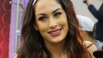Brie Bella's Bio: Net Worth