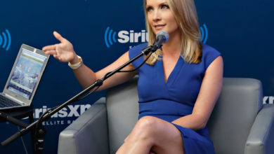 Dana Perino's Wiki: Net Worth