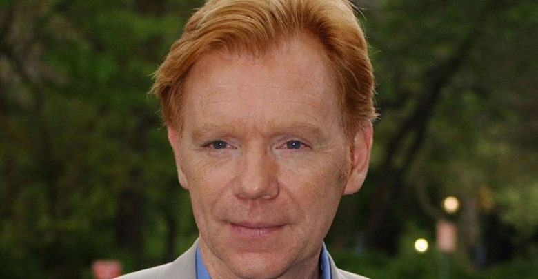 David Caruso's Wiki: Net Worth