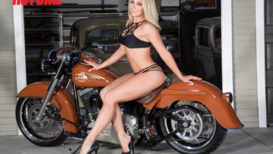 Who is Dianna Dahlgren? Wiki: Husband