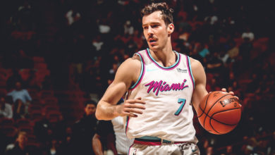 Goran Dragic's Bio: Wife