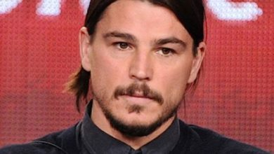Josh Hartnett's Bio-Wiki: Wife