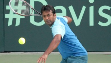 Leander Paes's Wiki: Wife