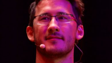 Who is Markiplier? Bio: Girlfriend