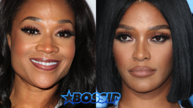 Mimi Faust's Bio: Net Worth