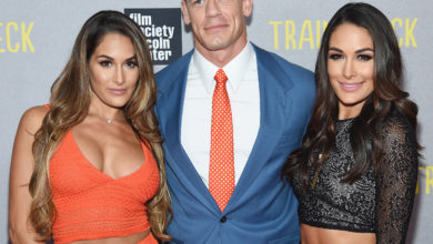 Who's Nikki Bella? Bio: Net Worth