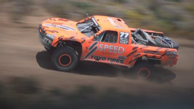 Robby Gordon's Bio: Wife